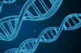 HBM Healthcare tops biotech trust league in 2017