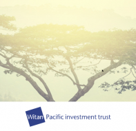A fair year for Witan Pacific and an asset allocation switch