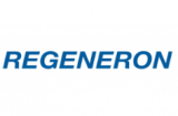 IBT backed Regeneron teams up with Bluebird on T cell cancer therapies