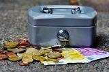 SWEF Euro cash